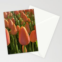 chicago orange tulips in may Stationery Cards