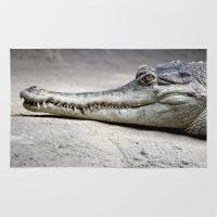 crocodile Area & Throw Rugs featuring Crocodile by Tiffany Anne