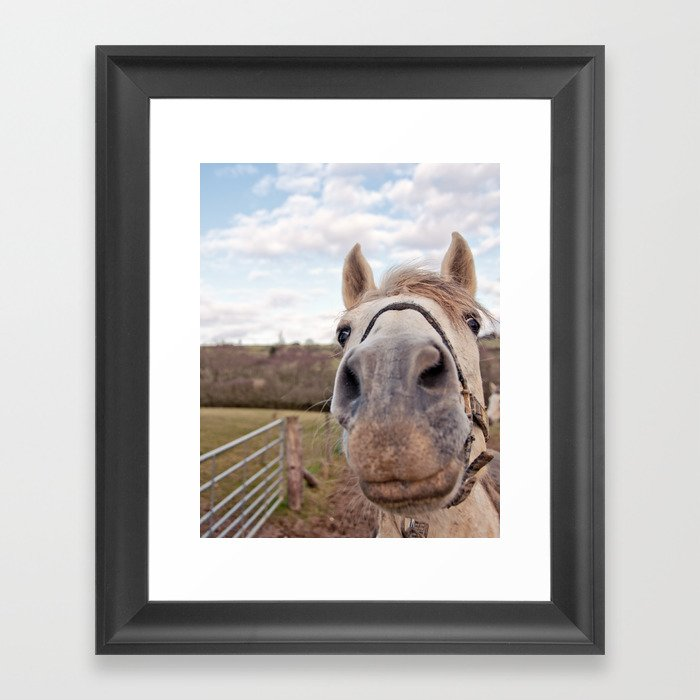 look at my horse... Framed Art Print
