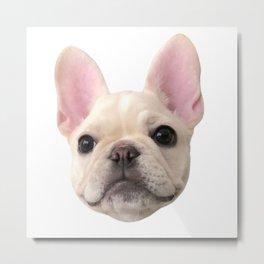 French Bulldog Riley Bellini Metal Print