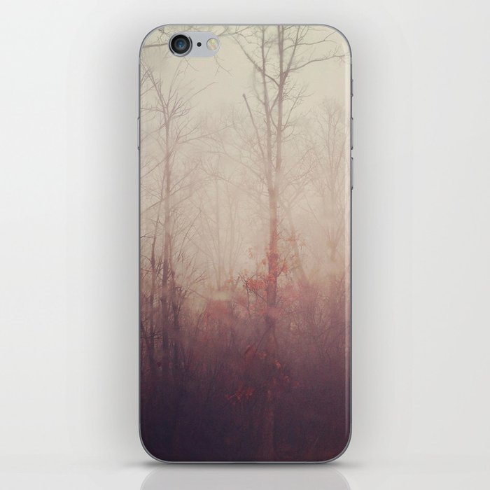 Winter Haze iPhone Skin