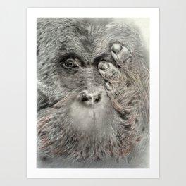 JAMBI Art Print