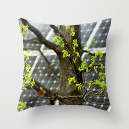 Four Seasons Photosynthesis - Spring. Blooming Oak Tree And A Solar Power Panel Throw Pillow