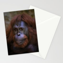 Female Orangutan Stationery Cards