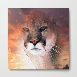 Cougar Sky Metal Print