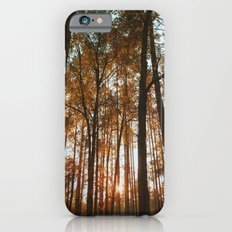 Forest iPhone 6s Slim Case