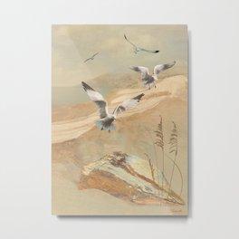 Gulf Coast Gulls Metal Print
