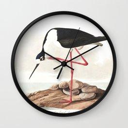 Long legged avocet, Birds of America, Audubon Plate 328 Wall Clock