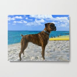 BOXER DOG SURFER BEACH BUM AND FRIEND Metal Print