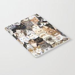 Catmina 2017 - SIX Notebook