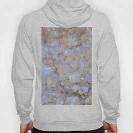 Fire and Ice Hoody