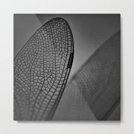 Dragonfly wing Metal Print