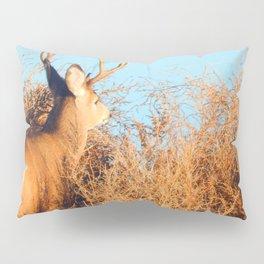 Lone Buck Pillow Sham