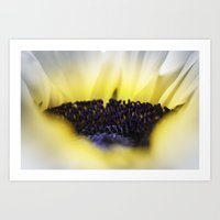 fireworks Art Prints featuring Fireworks by HappyMelvin