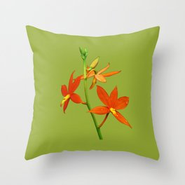 Encyclia Vitellina Throw Pillow
