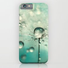 Single Dandy Starburst Slim Case iPhone 6