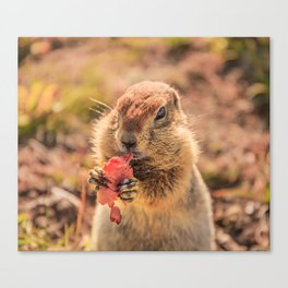 Have a smile for breakfast Canvas Print