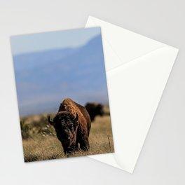Bufalo, Bisonte, landscape Stationery Cards