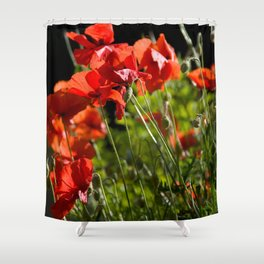 Red Poppies in France Shower Curtain