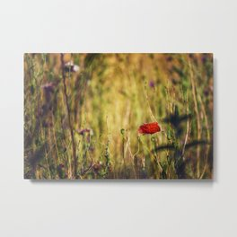 Wildflower Warriors Metal Print