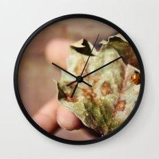 Explore Life Wall Clock