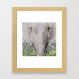 Foraging Elephant Framed Art Print