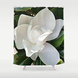 Magnolia 3 Shower Curtain