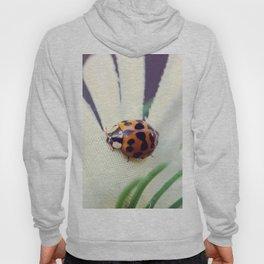 Ladybug On Flower Hoody