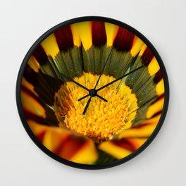 Yellow and red gazania Wall Clock