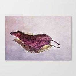 reflected leaf Canvas Print