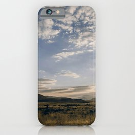 Majestic Beautiful Male African Lion Chilling In Desert At Romantic Sunset Ultra HD iPhone Case