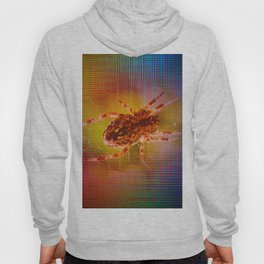 Moments Spider - Abstract Hoody