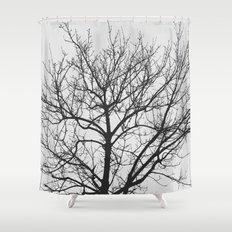 Undetermined  Shower Curtain