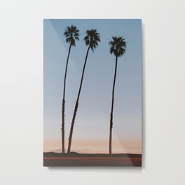 three palm trees iv / santa barbara, california Metal Print