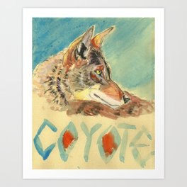 Coyote Sketch Art Print