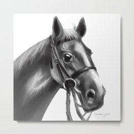 Gray farm horse Metal Print
