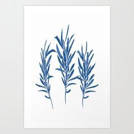 Eucalyptus Branches Blue Art Print