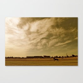 Avondale race course Canvas Print