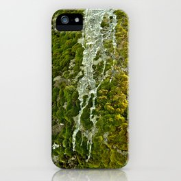 Moss and ice iPhone Case