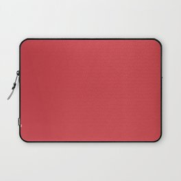 Well Read Stained Glass Laptop Sleeve