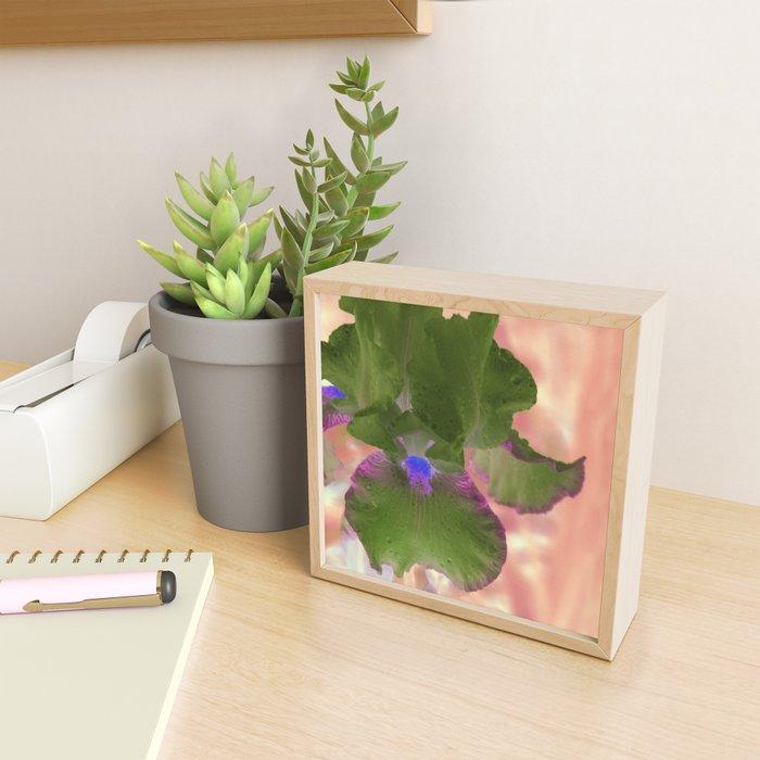 Iris No.1k by Kathy Morton Stanion Framed Mini Art Print