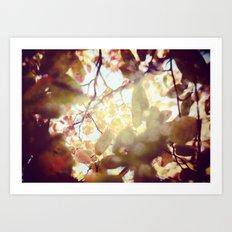 Falling for Fall Art Print