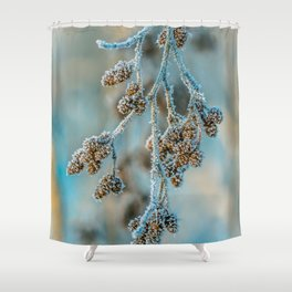 Frosty Winter Buds Shower Curtain