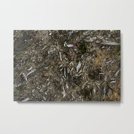 Heather Bell & Wood Fragments Metal Print