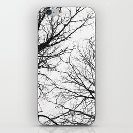 Tree Branches In Winter iPhone Skin