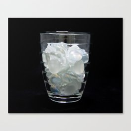 Drinking Glass Canvas Print