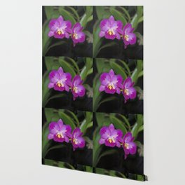 Magnificent Magenta Orchid - Ctna Capri Wallpaper