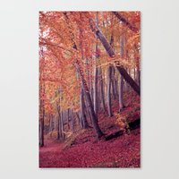 wood Canvas Prints featuring wood by Claudia Drossert