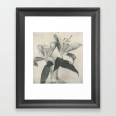 Lilies Framed Art Print