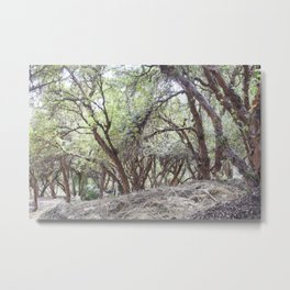 View of Sacsayhuaman trees Metal Print